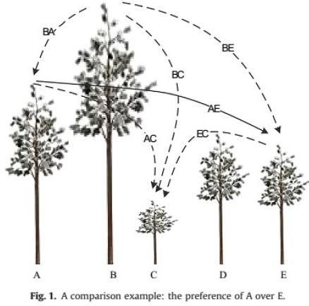 درخت مقایسات زوجی در روش بهترین بدترین BWM