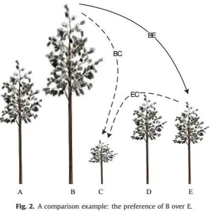 درخت bwm در مقایسه بهترین معیار با دیگر معیارها