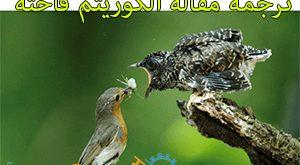 ترجمه مقاله isi الگوریتم فاخته